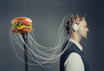Resultado de imagem para sistema nervoso e alimentação